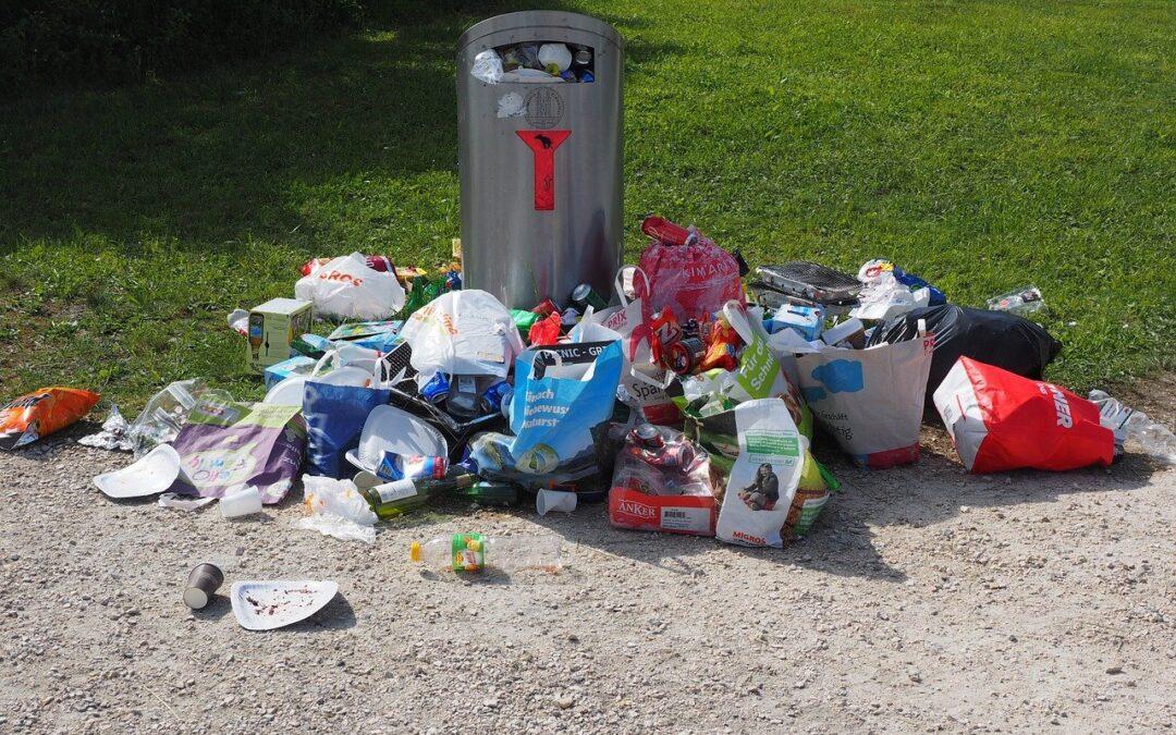 Pourquoi user de bonnes poubelles pour l'hygiène de son cadre de vie?